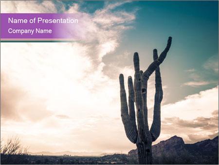 Saguaro Cactus PowerPoint Templates