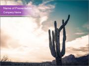 Saguaro Cactus PowerPoint Template