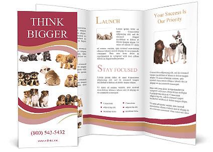 0000087492 Brochure Templates