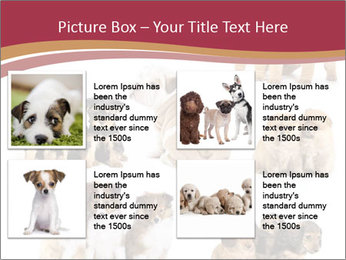 Group of Puppies PowerPoint Template - Slide 14