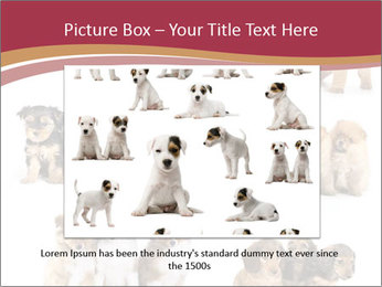 Group of Puppies PowerPoint Templates - Slide 15