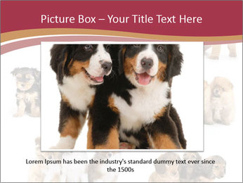 Group of Puppies PowerPoint Template - Slide 16