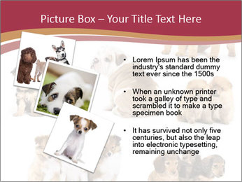 Group of Puppies PowerPoint Template - Slide 17