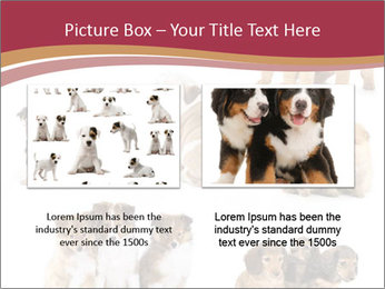 Group of Puppies PowerPoint Template - Slide 18