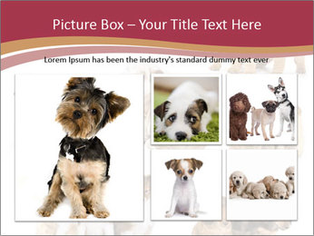 Group of Puppies PowerPoint Template - Slide 19