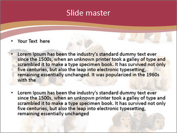 0000087492 PowerPoint Template - Slide 2