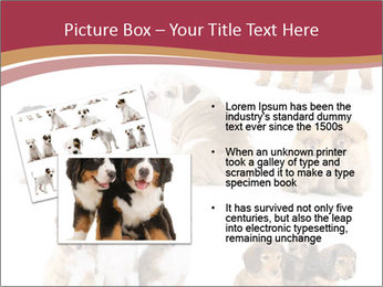 Group of Puppies PowerPoint Template - Slide 20