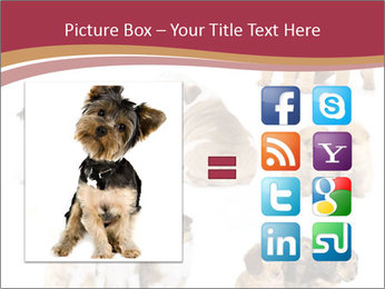Group of Puppies PowerPoint Template - Slide 21