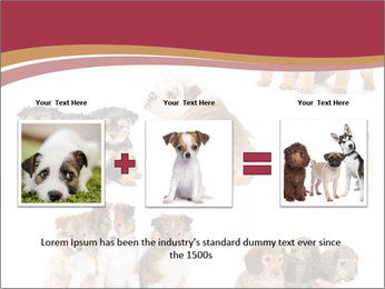 Group of Puppies PowerPoint Template - Slide 22