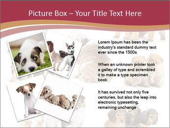 Group of Puppies PowerPoint Template - Slide 23