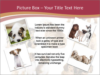 Group of Puppies PowerPoint Template - Slide 24