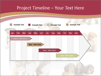 0000087492 PowerPoint Template - Slide 25