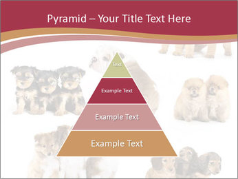 Group of Puppies PowerPoint Template - Slide 30