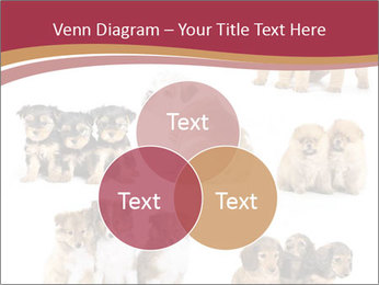 Group of Puppies PowerPoint Template - Slide 33