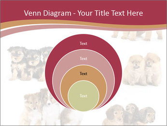 Group of Puppies PowerPoint Template - Slide 34