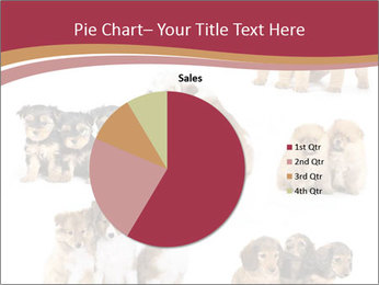 Group of Puppies PowerPoint Template - Slide 36