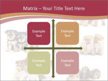 Group of Puppies PowerPoint Template - Slide 37