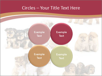 Group of Puppies PowerPoint Template - Slide 38