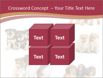 Group of Puppies PowerPoint Template - Slide 39