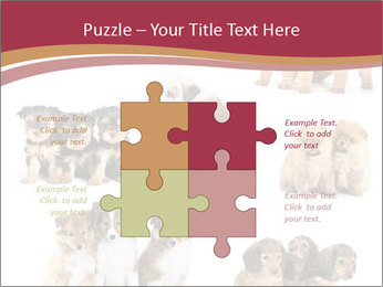 Group of Puppies PowerPoint Template - Slide 43