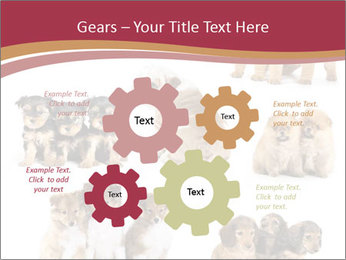 Group of Puppies PowerPoint Template - Slide 47