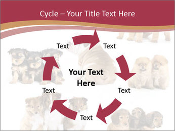 Group of Puppies PowerPoint Template - Slide 62