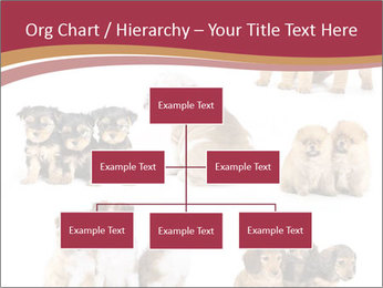 Group of Puppies PowerPoint Template - Slide 66