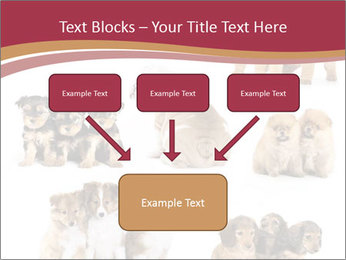 Group of Puppies PowerPoint Templates - Slide 70