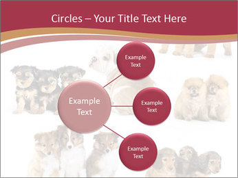 Group of Puppies PowerPoint Templates - Slide 79