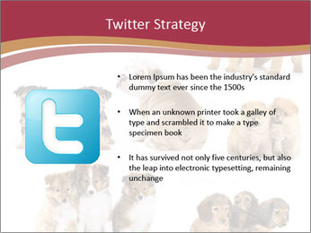 0000087492 PowerPoint Template - Slide 9