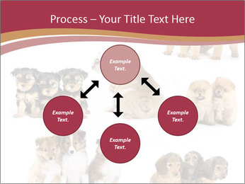 Group of Puppies PowerPoint Templates - Slide 91