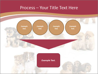 Group of Puppies PowerPoint Templates - Slide 93
