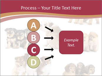 Group of Puppies PowerPoint Template - Slide 94