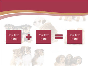 Group of Puppies PowerPoint Template - Slide 95