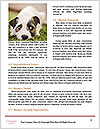 0000087492 Word Templates - Page 4