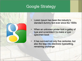 0000087494 PowerPoint Template - Slide 10