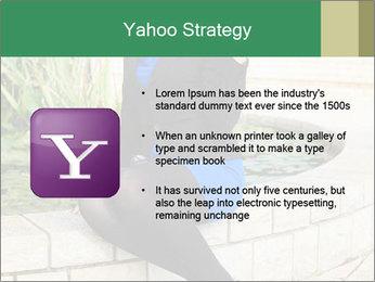 0000087494 PowerPoint Template - Slide 11