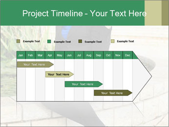 0000087494 PowerPoint Template - Slide 25