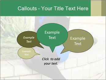 0000087494 PowerPoint Template - Slide 73