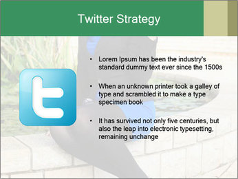 0000087494 PowerPoint Template - Slide 9