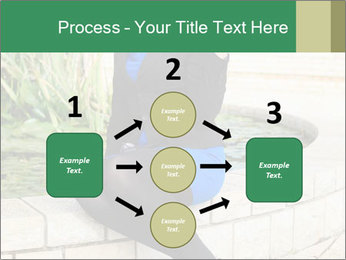 0000087494 PowerPoint Template - Slide 92