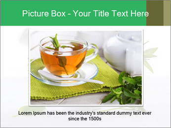 Medicinal Virtues PowerPoint Template - Slide 15