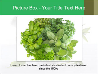 Medicinal Virtues PowerPoint Template - Slide 16