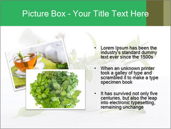 Medicinal Virtues PowerPoint Template - Slide 20