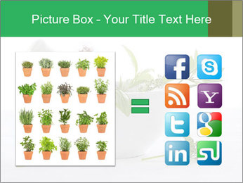 Medicinal Virtues PowerPoint Template - Slide 21