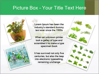 Medicinal Virtues PowerPoint Template - Slide 24