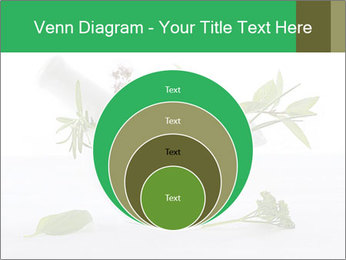 Medicinal Virtues PowerPoint Template - Slide 34