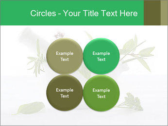 Medicinal Virtues PowerPoint Template - Slide 38