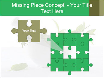 Medicinal Virtues PowerPoint Template - Slide 45
