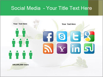 Medicinal Virtues PowerPoint Template - Slide 5